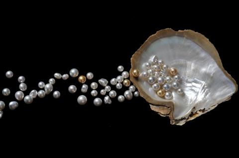 Cygnet-Pearls-043_685.jpg